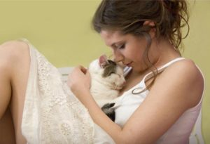 caring for a senior cat