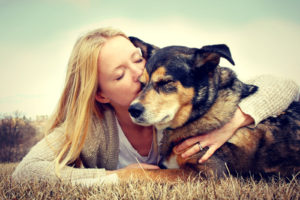 caring for your senior dog